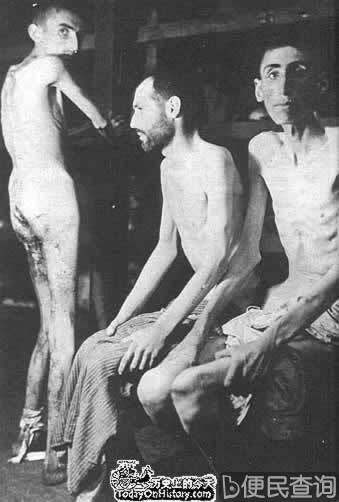 纳粹确定处理犹太人的最后解决方案--种族灭绝